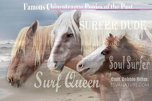Surf Queen Surfer Dude Soul Surfer by Captain Debbie Ritter