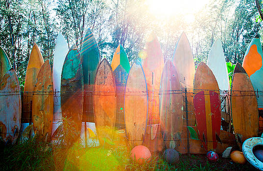 Surfboards Sun Flare by Monica and Michael Sweet