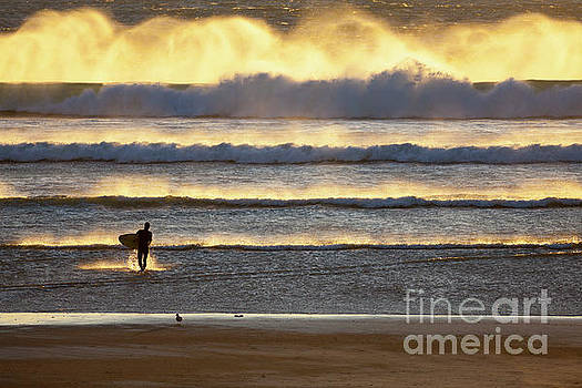 Surfer Heads into the Waves and Mist by Sharon Foelz