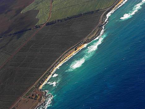 Elizabeth Hoskinson - Surfers Beach Maui