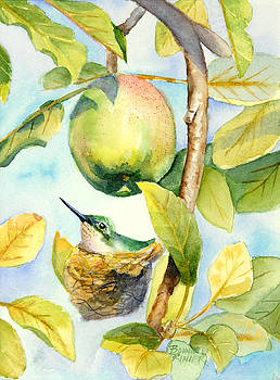 Surprise in the Apple Tree by Bonnie Rinier