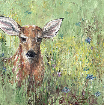 Surprised Fawn by Crystal Newton