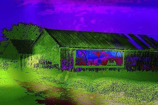 Dee Flouton - Surreal Barn Graffiti