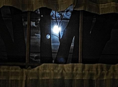 Dee Flouton - Surreal Double Moon