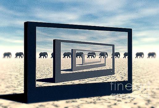 Surreal Elephant Desert Scene by Phil Perkins