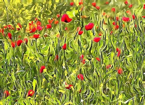Tracey Harrington-Simpson - Surreal Hypnotic Poppies