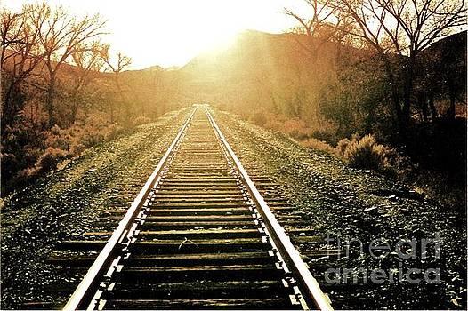 Surreal Railroad by Diana Dearen