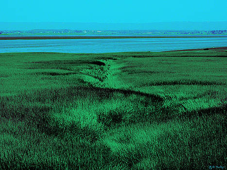 Surreal Seascape by Celtic Artist Angela Dawn MacKay