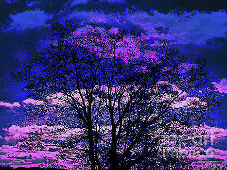 Dee Flouton - Surreal Tree Silhouette