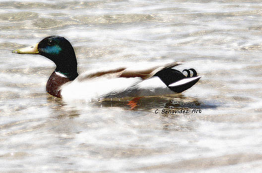 Surrealism Duck by Charles Benavidez