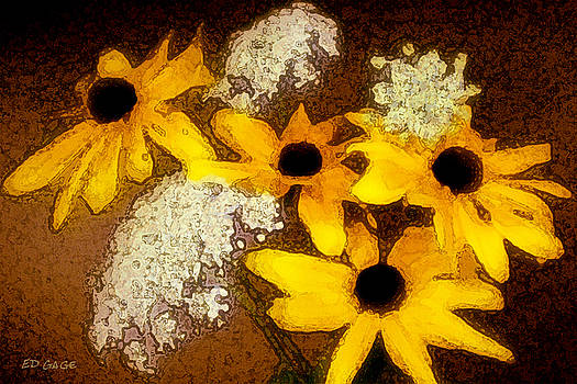 Susans with Lace by Ed A Gage