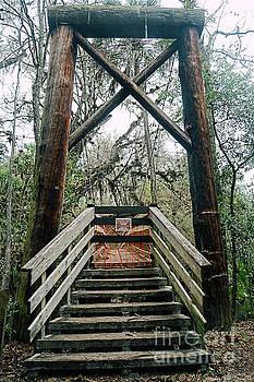 Suspended Suspension Bridge by Susan Smith