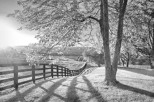 Sussex County Sunset in Black and White by Eleanor Bortnick