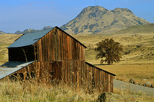Sutter Buttes Ranch by Pamela Patch