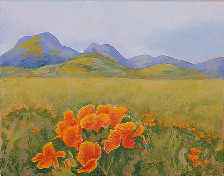 Sutter Buttes with California Poppies by Susan McNally