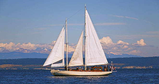 Sailing With Suva by Rick Lawler