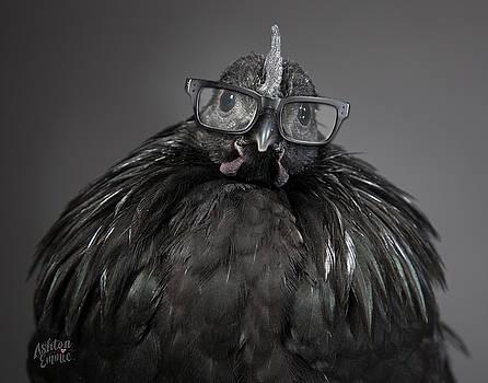 Svart Chick by Dorothy Roberts-Johnston