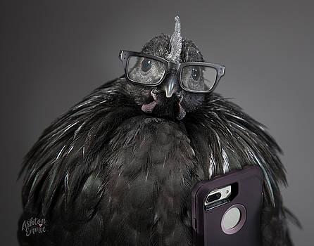 Svart Chick Pro by Dorothy Roberts-Johnston