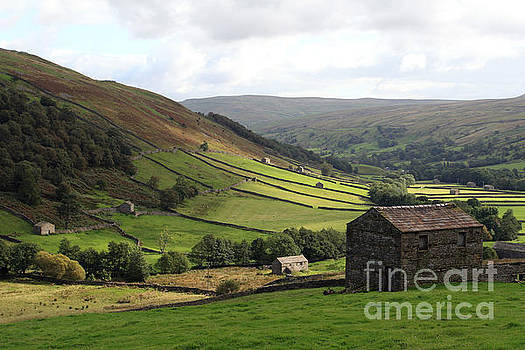 Swaledale  Yorkshire Dales by Paula Guttilla