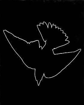 Swallow by Mark Moffett