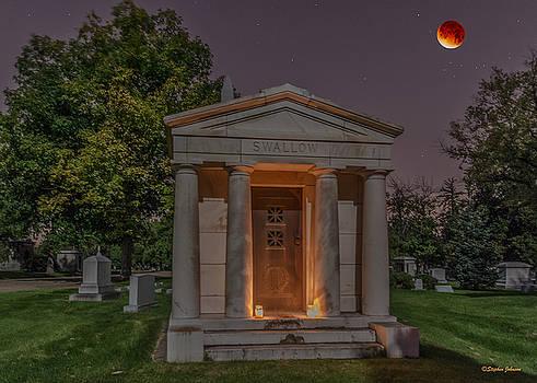 Swallow Mausoleum Under the Blood Moon by Stephen  Johnson