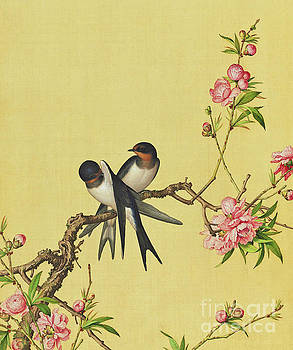Swallows and Tree Blossom. by Giuseppe Castiglione