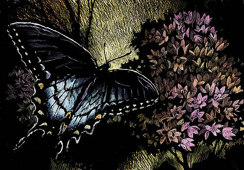 Swallowtail 1 by Laurie Musser