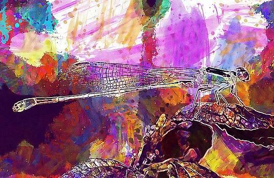 Swallowtail Damselfly Insect Wings  by PixBreak Art