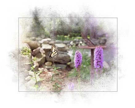 Swallowtail by Sue Collura