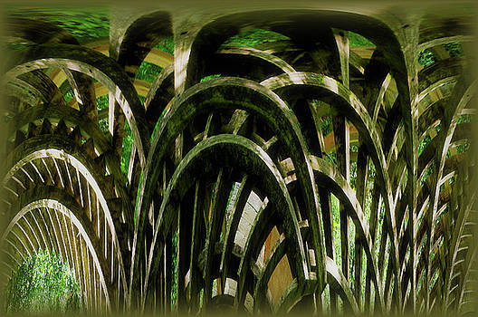 Swampy Curved Wood by Larry Jost