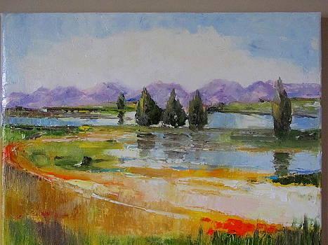 Swampy Vista by Sheila Gunter