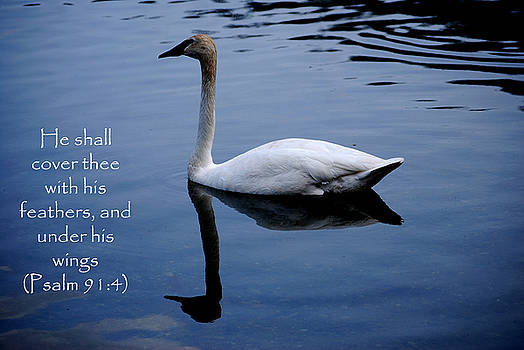 Michelle  BarlondSmith - Swan - Bible Quote