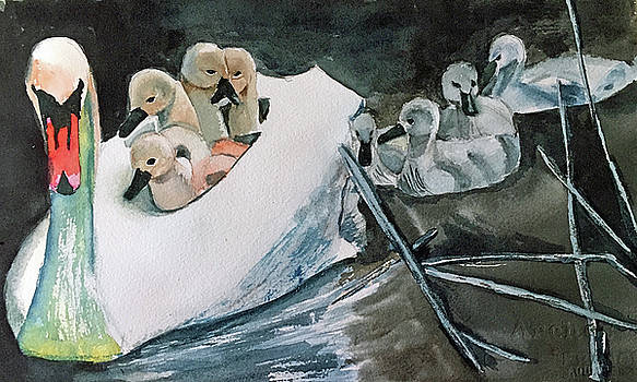 Swan and Cygnets by Lynne Atwood