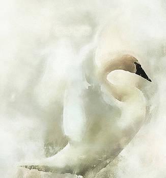 Swan ByMoonlight by Kathy Bassett