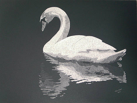 Swan Lake by Chris Hedges