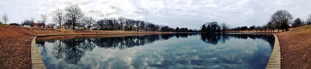 Swan Lake by Floyd Menezes