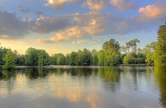 Swan Lake by Jason Rossi