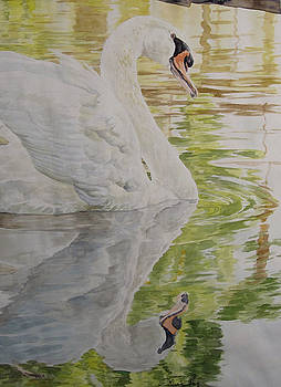 Swan Lake-LEP Available by Theresa Higby