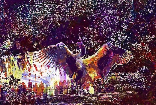 Swan Males Water Bird Nature Wing  by PixBreak Art