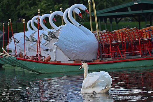 Toby McGuire - Swan meeting up with some friends
