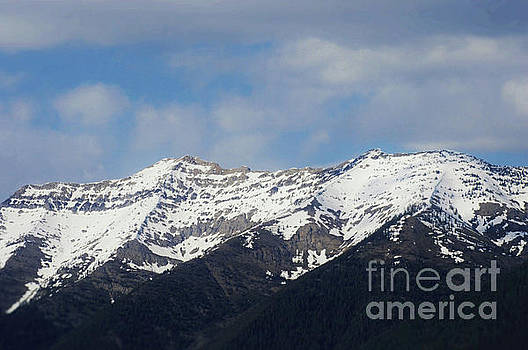Swan Mountain Range by Janie Johnson