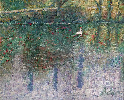 Felipe Adan Lerma - Swan on Town Lake - now Lady Bird Lake