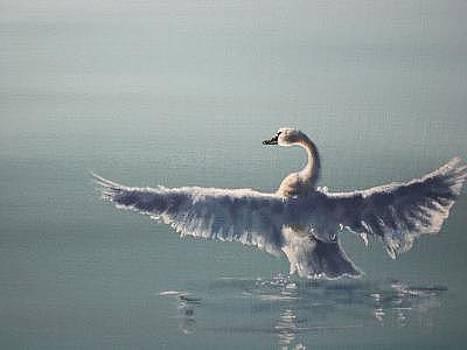 Swan's Dawn by Syndi Michael