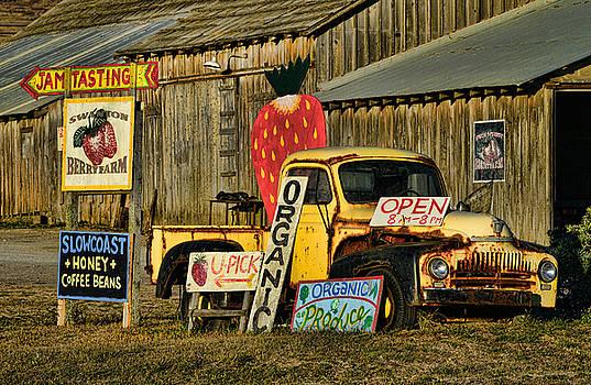 Swanton Berry Farm / International Pickup by Steve Siri