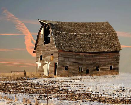 Swayback Barn by Kathy M Krause