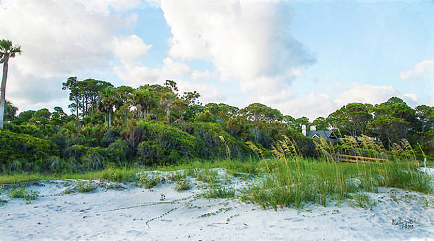 Swaying Sea Oats by Wally Smith