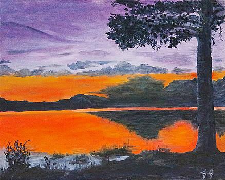 Swedish Reflection by Jaren Johnson