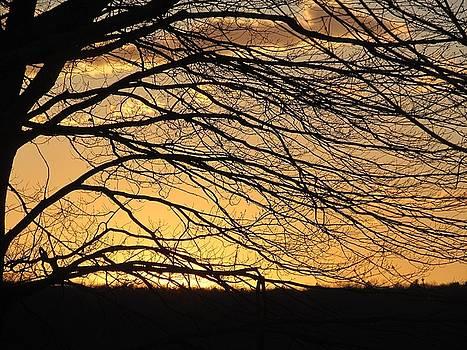 Sweeping the Sunset Sky by Loretta Pokorny