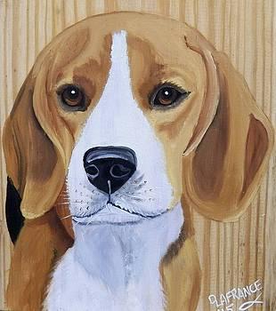Sweet Beagle  by Debbie LaFrance