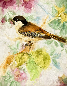 John K Woodruff - Sweet Bird
